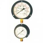 直立式法蘭式壓力錶